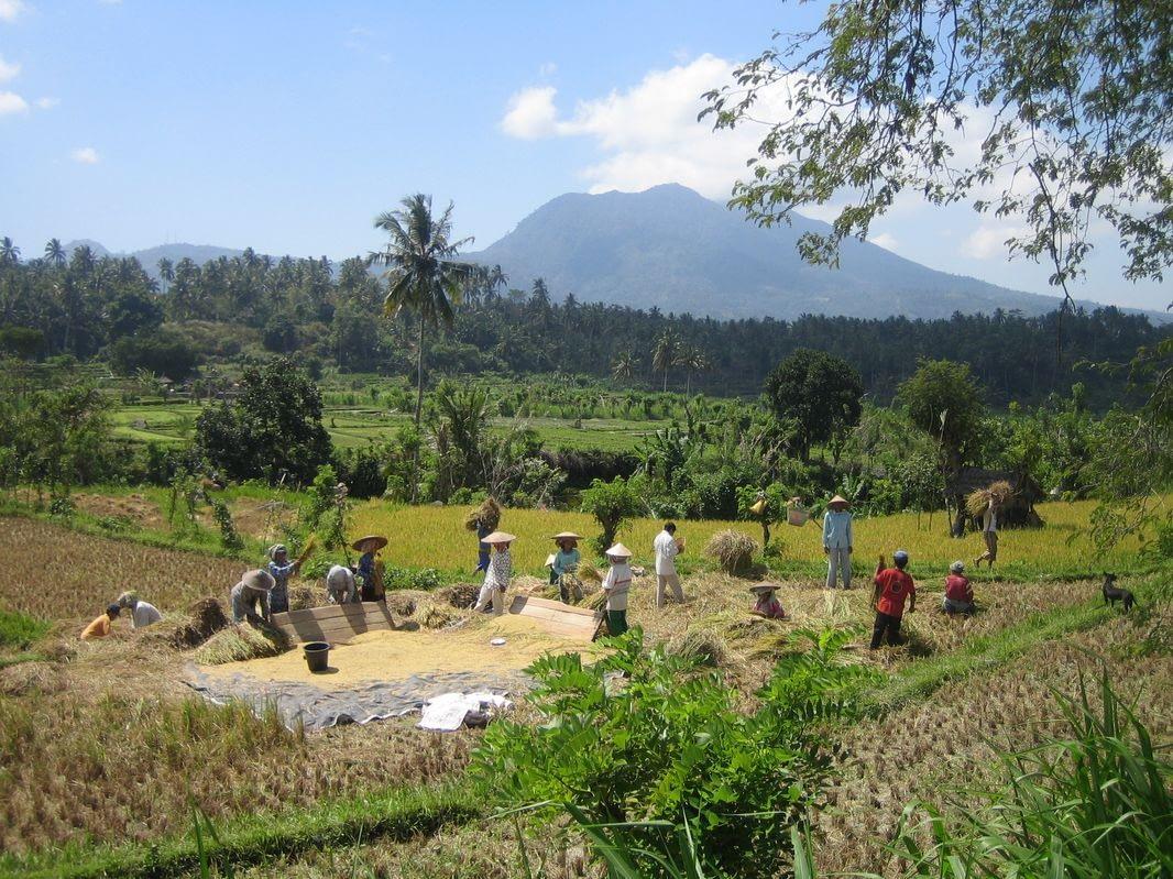 Photo Bali 230